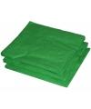 BBQ servetten groene kleur  25 stuks