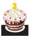 Verjaardags taart kaarsjes 3 jaar