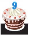 Verjaardags taart kaarsjes 9 jaar