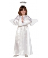 Fee kostuum voor kinderen