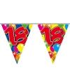 Slingers vlaggenlijnen 18 jaar 10 meter