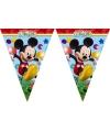 Slinger van Mickey Mouse 2,3 meter
