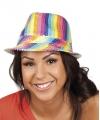 Regenboog hoedje met glitters