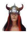 Viking pruik met vikinghelm